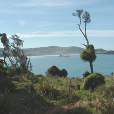 Surat Bay from Owaka Heads